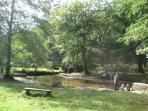 Wenchford Picnic Site, Blakeney, Forest of Dean