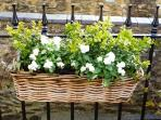 planted wicker baskets in Crafty Cottage garden
