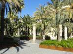 Parque de La Cultura at 50m