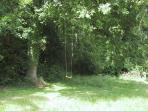 the swing under the oak