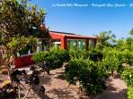 La Vedette Villa Margarita - Valsequillo Gran Canaria - Garden