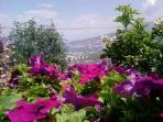 Vista dal giardino di casa