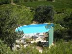 piscine avec vue sur le mont Ventoux