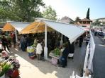 Green market, Gruz