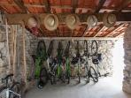 Bikes (free)