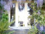 This wisteria covered cottage is just stunningly beautiful, inside and out!