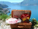 ready for a pic-nic?