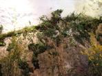 Mur végétal sur la montagne à l'intérieur de la maison