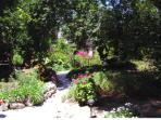 Half an acre of terraced gardens