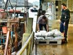 Working fish market in East Looe