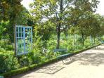 le jardin botannique à proximité
