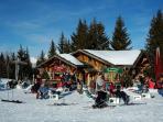 Local Ski Area