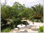 relax in the garden of guesthouse Aux Merveilleux - enjoy the beautiful garden