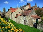 Daffodils in Helmsley