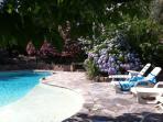 La piscine et ses bains de soleil