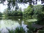 The tarn at Holehird Gardens - a couple of miles away. There is a delightful walk around it.