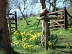 Springtime at the Orchard Gate