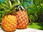 Régime fruits frais et Nature au programme !