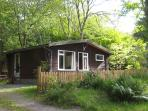 Satchwell chalet in its natural woodland setting -  perfect for 'escaping it all'
