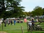 Weald and Downland Autumn Fair