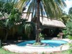 Swim under the Date Palm Tree