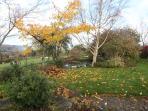 Heron Cottage garden