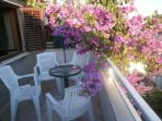 Sunny balcony full of flowers