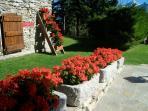 Le fioriere del giardino