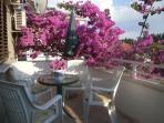 Sunny balcony full of flowers