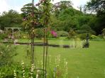 Garden behind the main house complete with lily pond and goldfish