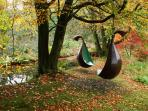 These sculptural pods (by Brian Fell) are a magnet to children and a perfect spot for bird watching