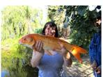 We have access to a Private fishing Lake ( Carp to 30lbs ) all equipment supplied ( Small charge )