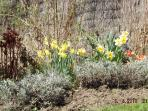 the fragrant spring garden