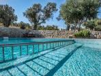 Pool surrounded by Big Olive Trees