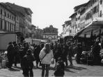 Pescia market square