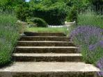 Steps to top garden, trampoline and wood land walks.