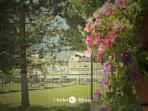 Chalet Alfonz | I fiori di Palma, Palma's flowers