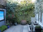 The private, secluded patio garden