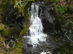 Waterfall -10 minute walk from  cottage
