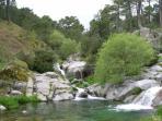 Acceso directo al río Arenal desde la finca para bañarse