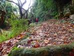 It is 3km on the old stone path to Platanias or Promyri, beautiful views and wonderful nature.