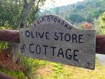 A warm welcome awaits you whatever the season...  at Olive Store Cottage.