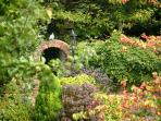 Stunning enclosed private garden, with wild and natural planting to encourage wildlife