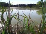 Smallwater lakes Photo 4