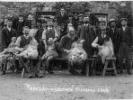 Shearing day at Troedrhiwgelynen 1914. Its sense of history carefully preserved.