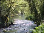 River Sarre 50 metres away