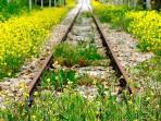 Ferrovia abbandonata nei pressi di Anticaia