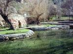Birth of the River - Castillo de Locubin