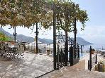 Split level vine covered terrace