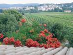 View from Villa - Vue du village medieval de Carces de la Villa